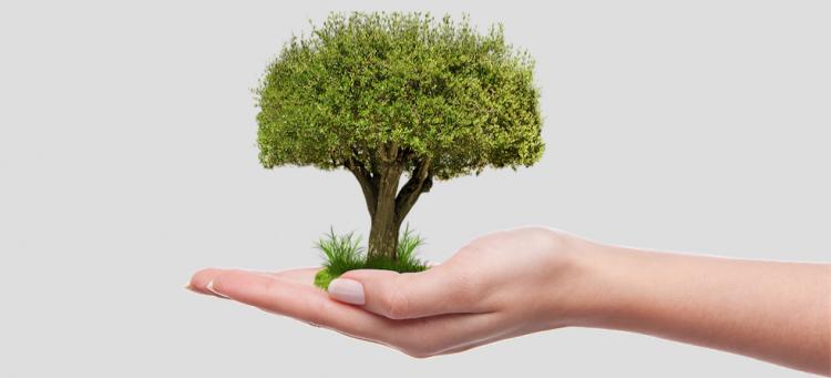9 ideas para hacer crecer tu empresa