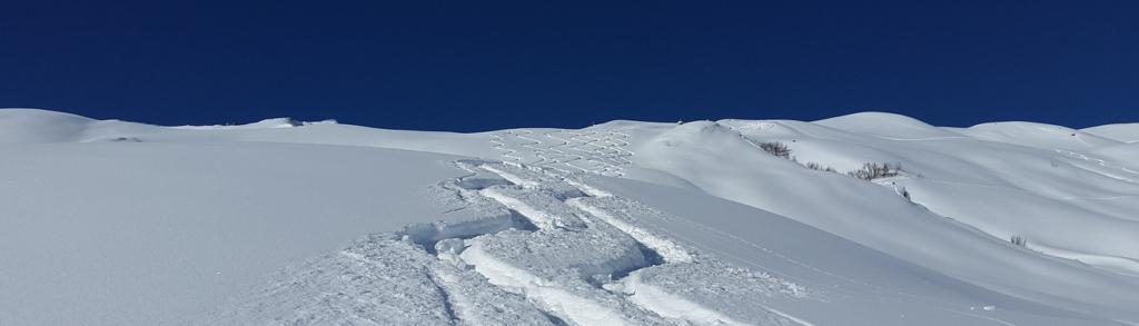 negocios estacionales - sobreviven pista de ski